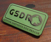 GSDR Enamel Badge
