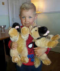 alfie holding german shepherd soft toys