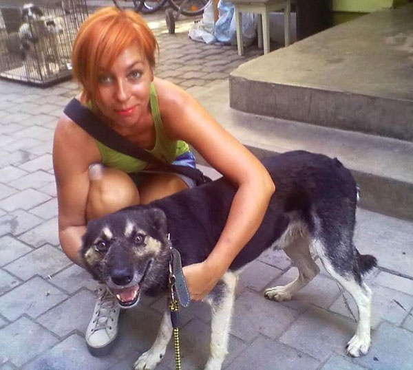 amil gsd with his romanian rescuer
