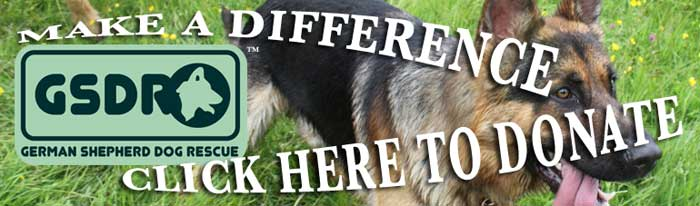 donate to german shepherd dog rescue