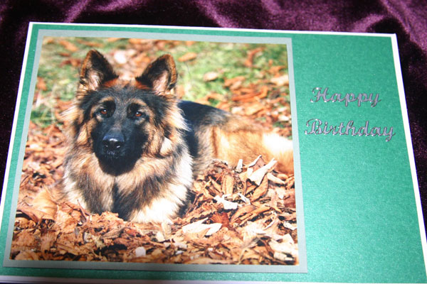 hand made cards for german shepherd dog rescue