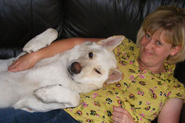 ice the white gsd and his mum Lucy lying on the sofa