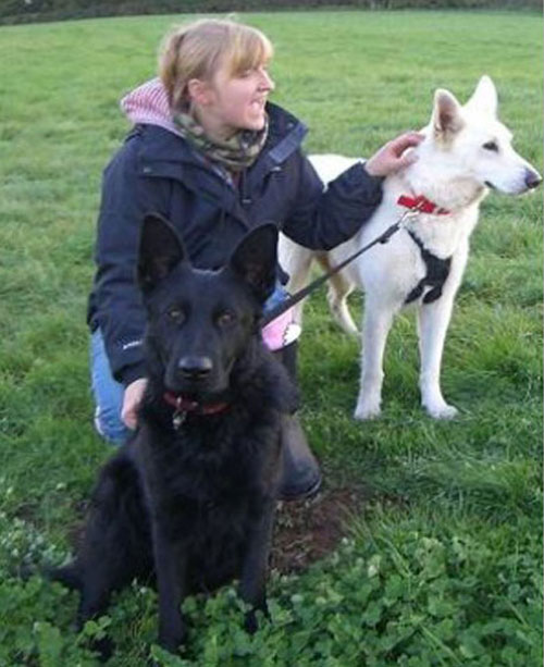 karie-ann with her 2 german shepherds willow and stan