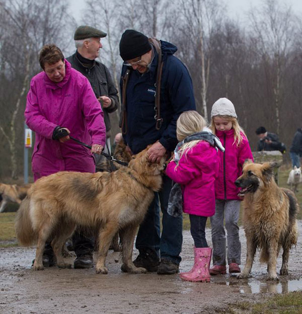 two young girls on a GSDR walk with their parents and dogs