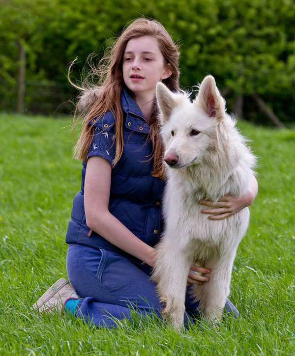 young girl with her pet white german shepherd