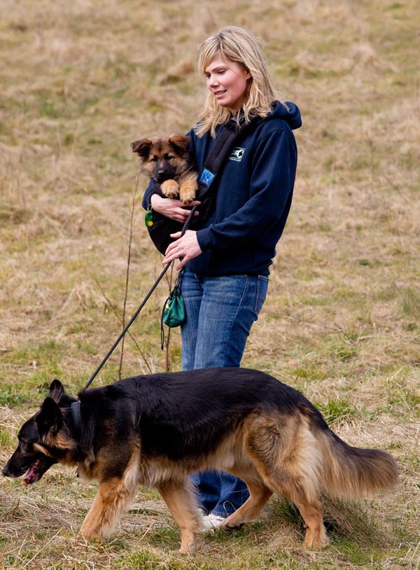 Fern Dog Rescue