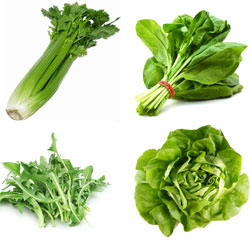 spinach, celery, lettuce and dandelion leaves are cooling leaves