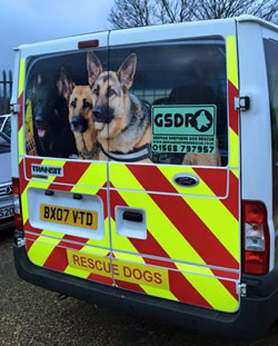 the new ne gsdr van thanks to support adoption for pets