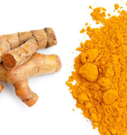 turmeric helps prevent and may cure cancer in dogs