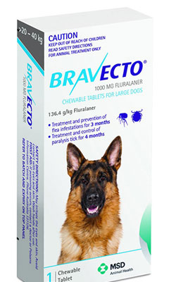 bravecto causes seizures and death in dogs