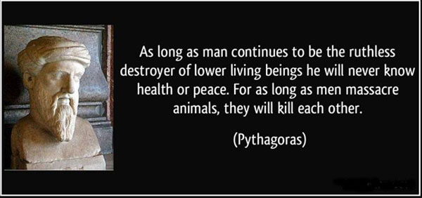 pythagoras quote about killing animals
